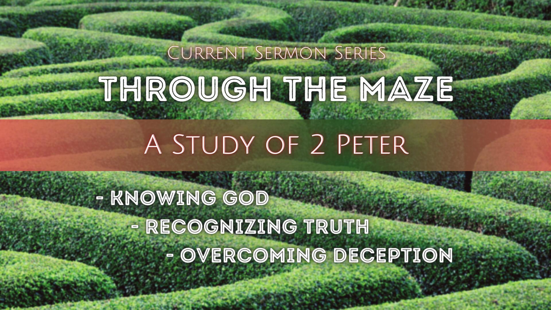Through the Maze (1)